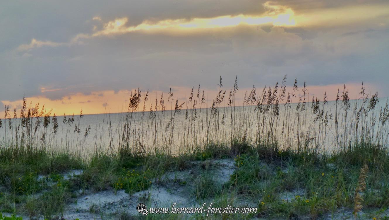 Dune de Floride