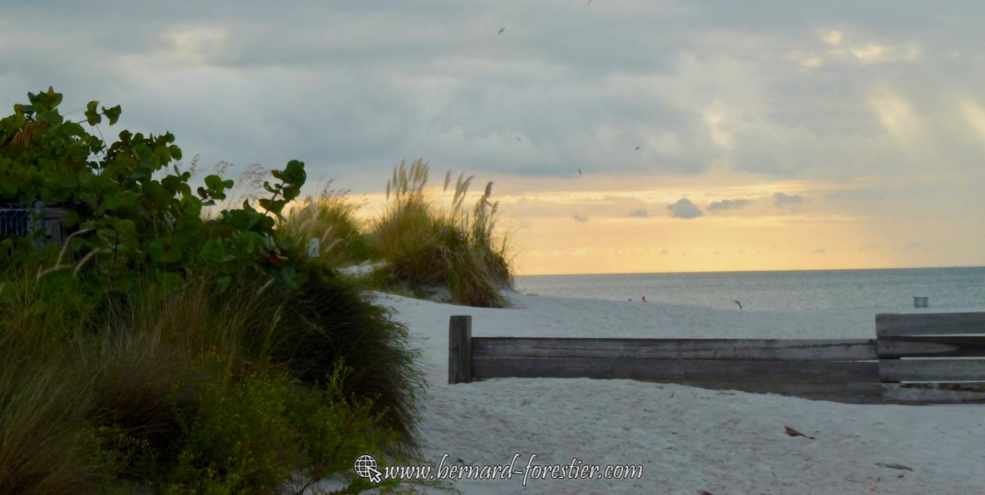 Petites dunes de Floride